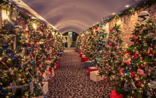 Christmas Trees Down the Corridor at the Capitol Theatre