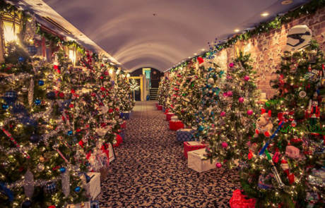 Christmas Trees at the Capitol Theatre