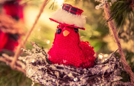 Bird with Tartan Hat Ornament