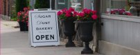 Image result for sugar dust bakery port hope